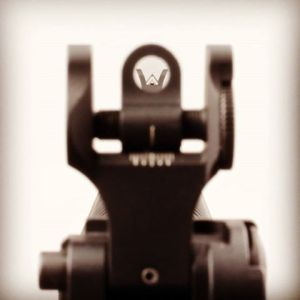 ar15news pic of fsp ws